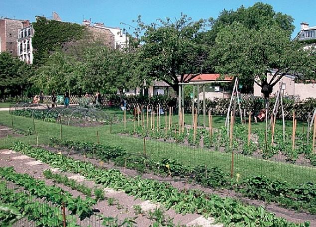 Une agriculture urbaine paris - Agriculture urbaine paris ...